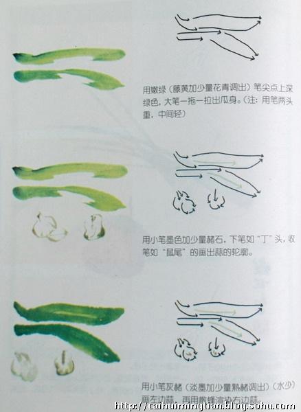 我们可以通过                    果画法:   白菜画法视频