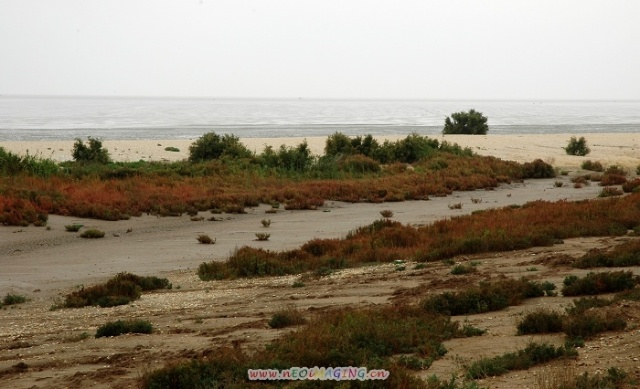 是大济路(大口河—济南)的起始点,也是山东西部和鲁北地区唯一