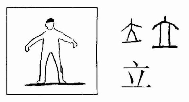 """一、本章图形识字含常用基本单字230个,包括关于人类身体、面部、手足、生活、劳作、以及自然、动物、植物等最重要的单体字。 二、有些虽非常用字,但是反映某些特定意义的关键字也列入其中,以作为""""字符""""用于扩展学习更多的汉字。如""""戈""""兵器""""字符"""";""""辰""""农业""""字符""""。 三、每个图形旁列出大号字:上行为""""甲骨文""""及""""篆体"""";下行为""""宋体"""