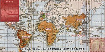 武夷桐木关地图