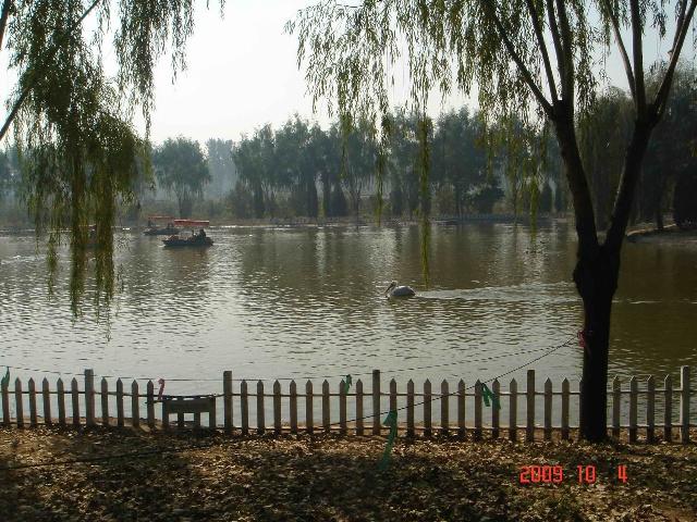 北京野生动物园-梅园小憩-搜狐博客