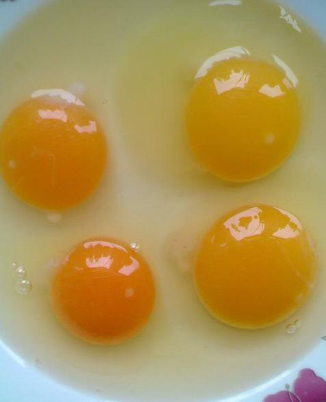 """09年关于""""蛋""""的故事  - 谢浮名 - 谢浮名博客"""