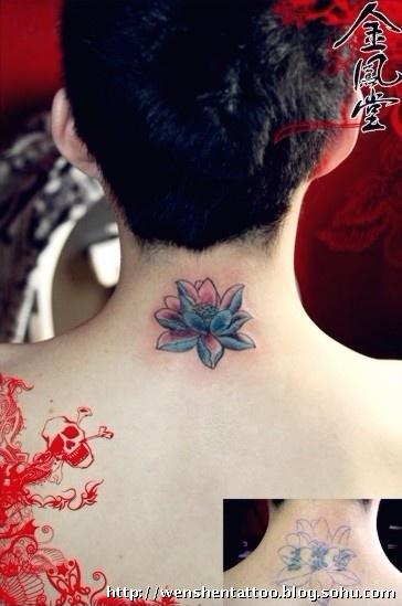 图腾玫瑰纹身 海豚纹身 情侣纹身 六芒星纹身 羽毛纹身